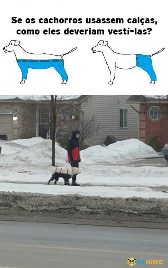 Como deveriam ser as calças de cachorros?