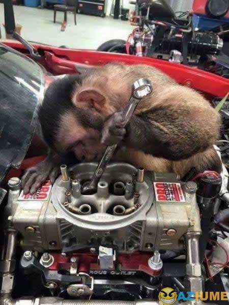 Os mecânicos da minha cidade é assim