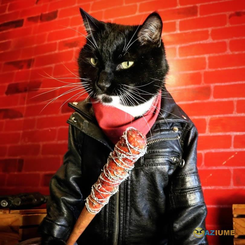 Gato Negan