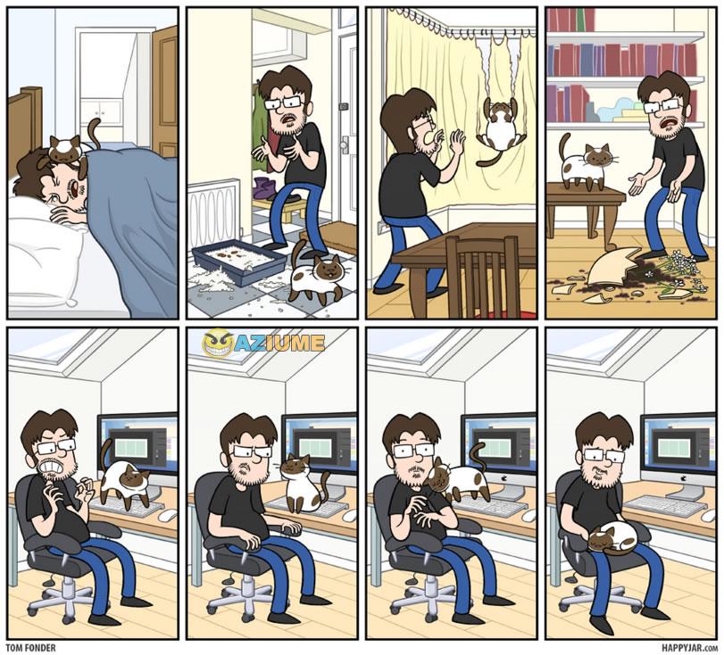 Apenas 1 dia normal com gato em casa