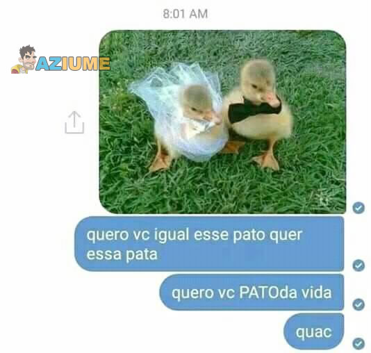 Cantada do pato