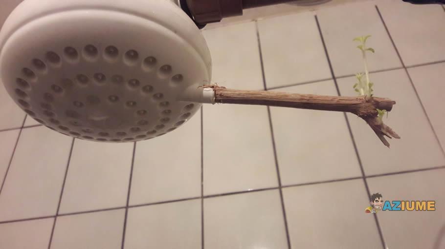 Este é o verdadeiro chuveiro ecológico?