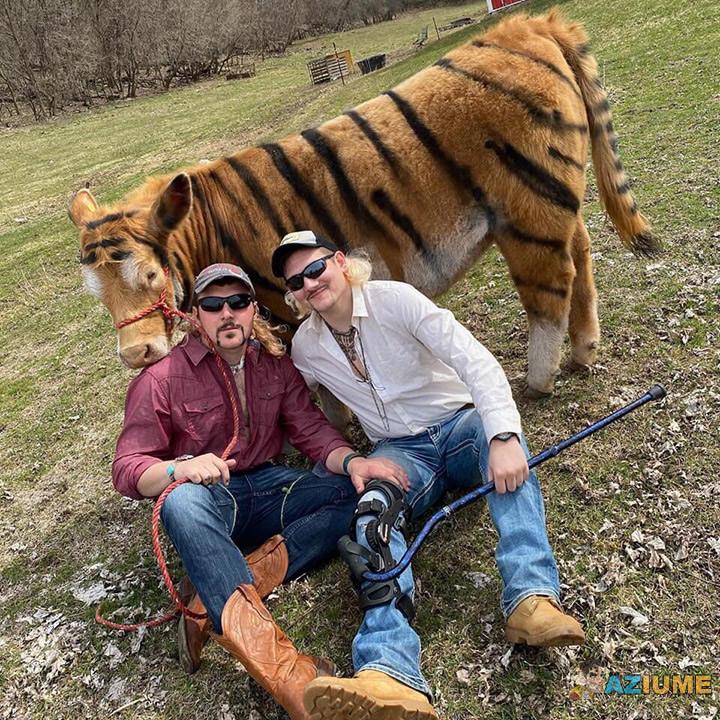 Parece que é um Tigre falso
