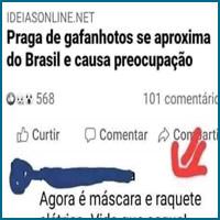 Da série: O melhor do Brasil é o brasileiro