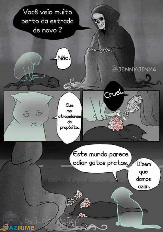 Gato preto dá azar