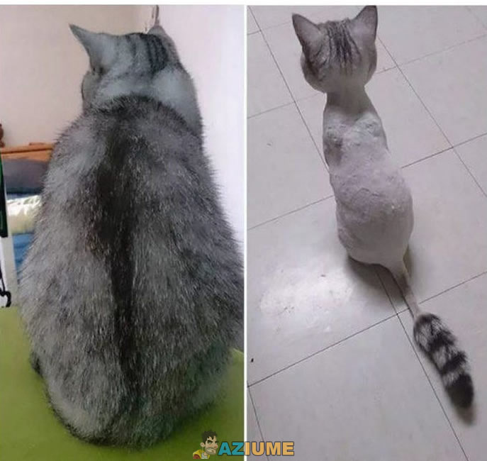 Antes e depois de ir no cabeleireiro