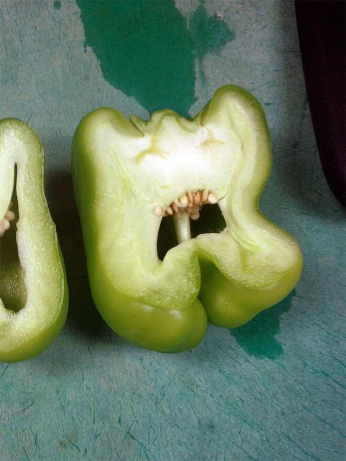 Pimentões gritando de terror