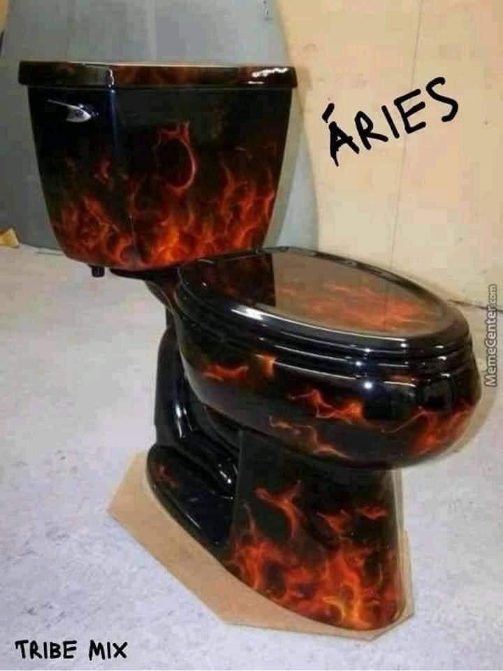 12 signos versão vaso sanitário