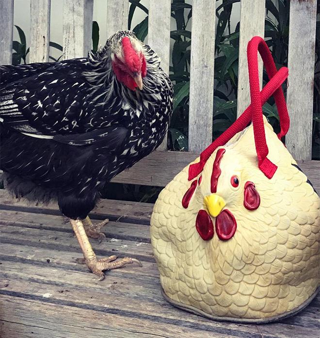 Quem precisa da Louis Vuitton quando existe essa bolsa de frango