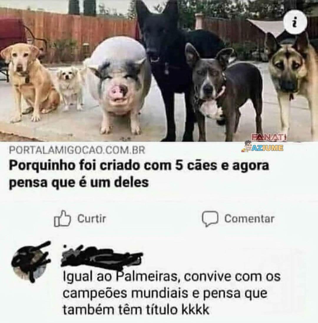 Zuando o Palmeiras