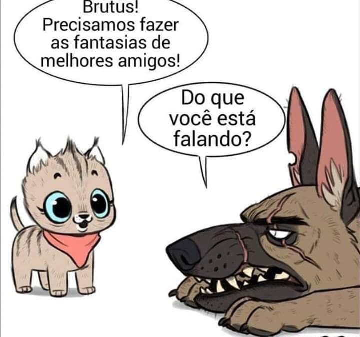 A historia Pixie e Brutus
