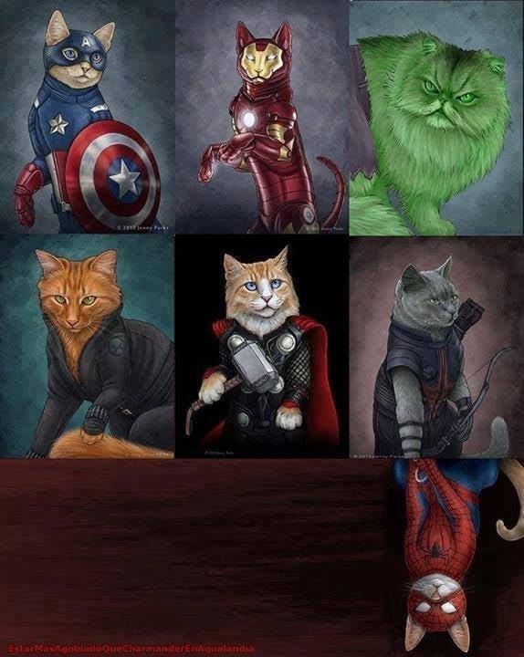 E se os Vingadores fossem gatos... VinGATOres
