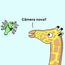 Câmera nova da mosca