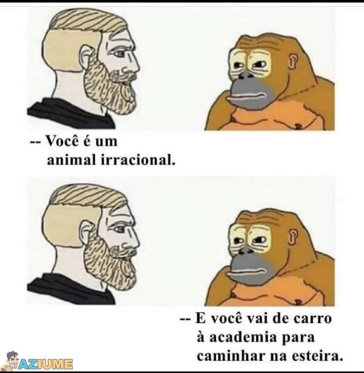 Quem é o animal irracional?